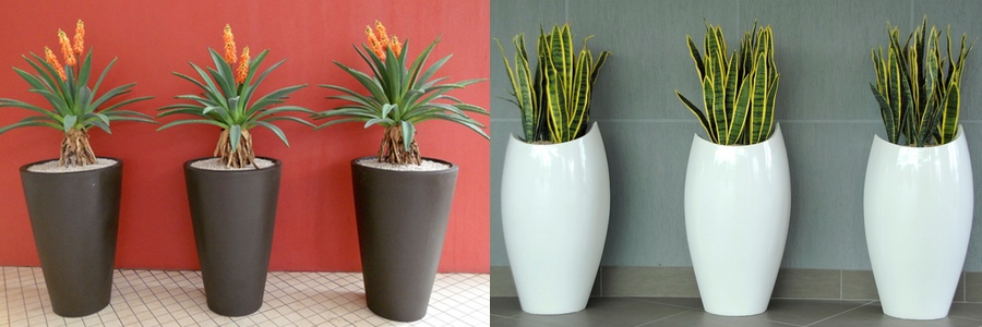 Botanica Pots Planters And Water Features